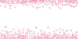 Kirschblüte-Blumenblätter, die unten fallen Romantische rosa seidige mittlere Blumen Starke Fliegenkirschblumenblätter Breites sc stock abbildung