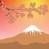 Kirschblüte gegen Berg Frühlingsvektorhintergrund Lizenzfreies Stockbild