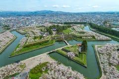 Kirschblüte an Goryokaku-Park Stockfotos