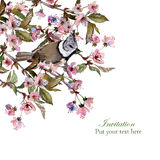 Kirschblüte-Grußkartenschablone Lizenzfreie Stockfotos
