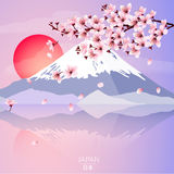 Kirschblüte mit Berg und Sonne Stockfotografie