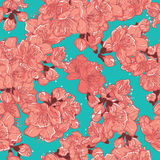 Kirschblüte, nahtloses Muster Kirschblütes Stockbild