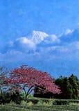 Kirschblüten auf dem Hintergrund von Fujiyama Zeichnungsaquarell auf Papier Naive Kunst Abstrakte Kunst Malereiaquarell auf Papie vektor abbildung