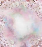 Kirschblüten-Blumenölgemälde Stockbilder