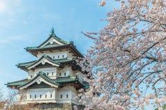 Kirschblüten an Hirosaki-Schloss Lizenzfreie Stockfotografie