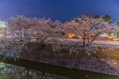 Kirschblüten nachts Stockfotografie