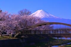 Kirschblüten und Mt Fuji von der Nordküste von See Kawaguchi Japan Stockbild