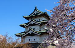 Kirschblüten und Hirosaki-Schloss Stockfoto