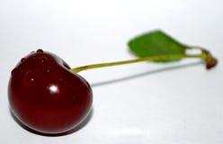 Kirsche Stockbild