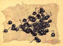 Kirsche auf dem alten Segeltuch Lizenzfreie Stockfotografie