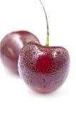Kirsche auf weißem Hintergrund Stockfotos