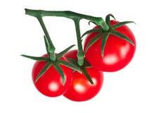 Kirsche-ciliegini pachino Tomatengruppe, Wege Stockbilder