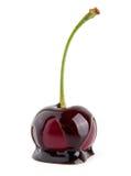 Kirsche in einer Schokolade Lizenzfreies Stockfoto