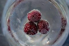 Kirsche-hineingegossener Chardonnay Lizenzfreie Stockfotografie
