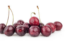 Kirsche, Kirschbaum, rote reife Kirschen Lizenzfreies Stockbild