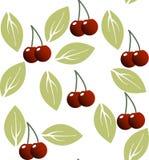 Kirsche und Blätter im nahtlosen Muster Lizenzfreie Stockfotografie