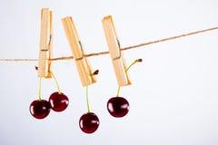 Kirsche und Seil auf Weiß mit Rohrschelle Stockfoto
