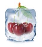 Kirschen eingefroren in der Eiswürfelnahaufnahme auf weißem Hintergrund Stockfotografie