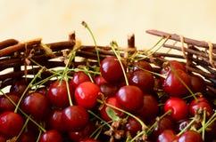 Kirschen im Korb Stockfotos