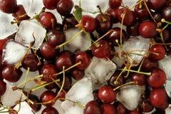Kirschen mit Eis Stockbilder
