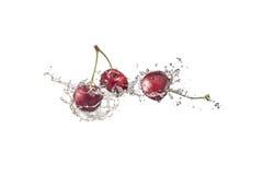 Kirschen mit Wasser spritzt, lokalisiert auf weißem Hintergrund Stockfotografie