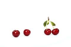 Kirschrelationen stockbilder