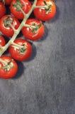 Kirschtomaten auf Rebe Lizenzfreies Stockbild