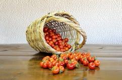 Kirschtomaten und -korb Stockfoto