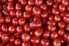 Kirschtomatenfrucht im Markt stockfotografie