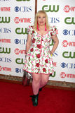 Kirsten Vangsness Stock Photography