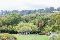 Kirstenbosch全国植物园的人们 免版税库存图片