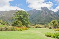 Kirstenbosch植物园和城堡岩石在表Mountai上 库存图片