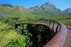 Kirstenbosch植物园 免版税库存图片