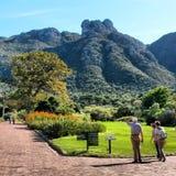 Kirstenbosch Ogródy Obraz Royalty Free