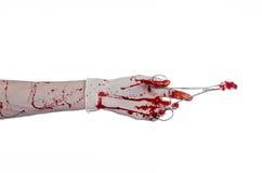 Kirurgi- och medicintema: utför den blodiga handen för doktorn i handsken som rymmer en blodig kirurgisk klämma med bomullstoppen Arkivbild