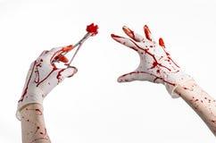 Kirurgi- och medicintema: utför den blodiga handen för doktorn i handsken som rymmer en blodig kirurgisk klämma med bomullstoppen Royaltyfri Fotografi