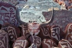 Kiselstenar från den sakrala sjön Manasarovar med hieroglyf och huvudsaklig buddistisk ` för mantra`-Om Mani Padme Hum, royaltyfria foton
