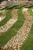 Kiselstenar, gräs och blommor Arkivfoton