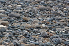 Kiselstenar i Brittany Arkivfoto