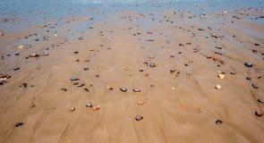 Kiselstenar i sandig strand Arkivfoto