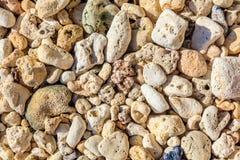 Kiselstenar och koraller, Boracay ö, Filippinerna Fotografering för Bildbyråer