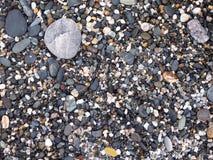 Kiselstenar och stenar Royaltyfri Fotografi