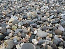 Kiselstenar på en Kalifornien strand Royaltyfria Foton