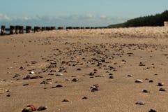 Kiselstenar på stranden 3 Royaltyfria Foton