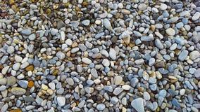 Kiselstenar på stranden som bakgrund Arkivfoton