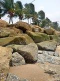 Kiselstenen och kokosnöten gömma i handflatan på stranden Fotografering för Bildbyråer