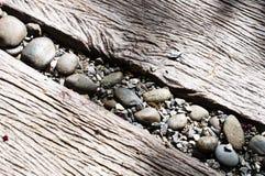 Kiselstensten i mitt av den wood banavägen Royaltyfria Bilder
