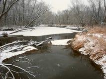 Kishwaukee河冬天风景伊利诺伊 免版税库存图片