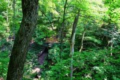 Kishwaukee gorge landscape Illinois. Kishwaukee Gorge Forest Preserve is a beautiful forested natural area in northern Illinois Stock Image