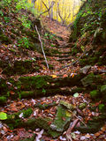 Kishwaukee Gorge in Illinois. Autumn scenery at Kishwaukee Gorge Forest Preserve in Illinois Royalty Free Stock Image